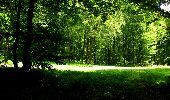 Trail Walk LONGPONT - en forêt de Retz_56_Longpont_tour du Général Mangin_AR - Photo 40