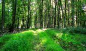 Trail Walk LONGPONT - en forêt de Retz_56_Longpont_tour du Général Mangin_AR - Photo 131