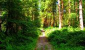 Trail Walk LONGPONT - en forêt de Retz_56_Longpont_tour du Général Mangin_AR - Photo 16
