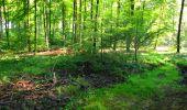 Trail Walk LONGPONT - en forêt de Retz_56_Longpont_tour du Général Mangin_AR - Photo 145