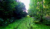 Trail Walk LONGPONT - en forêt de Retz_56_Longpont_tour du Général Mangin_AR - Photo 168
