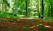 Trail Walk LONGPONT - en forêt de Retz_56_Longpont_tour du Général Mangin_AR - Photo 30