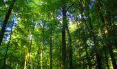 Trail Walk LONGPONT - en forêt de Retz_56_Longpont_tour du Général Mangin_AR - Photo 157