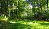 Trail Walk LONGPONT - en forêt de Retz_56_Longpont_tour du Général Mangin_AR - Photo 139