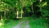 Trail Walk LONGPONT - en forêt de Retz_56_Longpont_tour du Général Mangin_AR - Photo 165