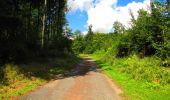Trail Walk LONGPONT - en forêt de Retz_56_Longpont_tour du Général Mangin_AR - Photo 76