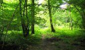 Trail Walk LONGPONT - en forêt de Retz_56_Longpont_tour du Général Mangin_AR - Photo 6