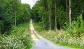Trail Walk LONGPONT - en forêt de Retz_56_Longpont_tour du Général Mangin_AR - Photo 65