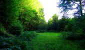 Trail Walk LONGPONT - en forêt de Retz_56_Longpont_tour du Général Mangin_AR - Photo 166