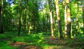 Trail Walk LONGPONT - en forêt de Retz_56_Longpont_tour du Général Mangin_AR - Photo 132