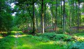 Trail Walk LONGPONT - en forêt de Retz_56_Longpont_tour du Général Mangin_AR - Photo 171