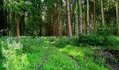Trail Walk LONGPONT - en forêt de Retz_56_Longpont_tour du Général Mangin_AR - Photo 187