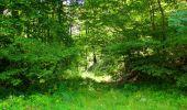 Trail Walk LONGPONT - en forêt de Retz_56_Longpont_tour du Général Mangin_AR - Photo 71