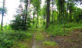 Trail Walk LONGPONT - en forêt de Retz_56_Longpont_tour du Général Mangin_AR - Photo 100