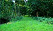 Trail Walk LONGPONT - en forêt de Retz_56_Longpont_tour du Général Mangin_AR - Photo 169