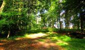 Trail Walk LONGPONT - en forêt de Retz_56_Longpont_tour du Général Mangin_AR - Photo 104
