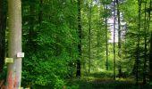 Trail Walk LONGPONT - en forêt de Retz_56_Longpont_tour du Général Mangin_AR - Photo 108
