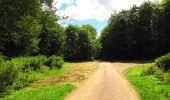 Trail Walk LONGPONT - en forêt de Retz_56_Longpont_tour du Général Mangin_AR - Photo 57