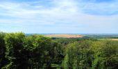 Trail Walk LONGPONT - en forêt de Retz_56_Longpont_tour du Général Mangin_AR - Photo 88