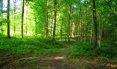 Trail Walk LONGPONT - en forêt de Retz_56_Longpont_tour du Général Mangin_AR - Photo 122