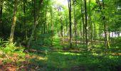 Trail Walk LONGPONT - en forêt de Retz_56_Longpont_tour du Général Mangin_AR - Photo 143