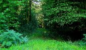 Trail Walk LONGPONT - en forêt de Retz_56_Longpont_tour du Général Mangin_AR - Photo 167