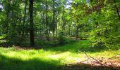 Trail Walk LONGPONT - en forêt de Retz_56_Longpont_tour du Général Mangin_AR - Photo 147