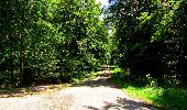 Trail Walk LONGPONT - en forêt de Retz_56_Longpont_tour du Général Mangin_AR - Photo 54