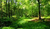 Trail Walk LONGPONT - en forêt de Retz_56_Longpont_tour du Général Mangin_AR - Photo 117