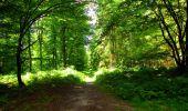 Trail Walk LONGPONT - en forêt de Retz_56_Longpont_tour du Général Mangin_AR - Photo 17