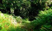 Trail Walk LONGPONT - en forêt de Retz_56_Longpont_tour du Général Mangin_AR - Photo 153