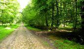 Trail Walk LONGPONT - en forêt de Retz_56_Longpont_tour du Général Mangin_AR - Photo 32