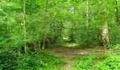 Trail Walk LONGPONT - en forêt de Retz_56_Longpont_tour du Général Mangin_AR - Photo 5