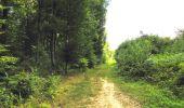 Trail Walk LONGPONT - en forêt de Retz_56_Longpont_tour du Général Mangin_AR - Photo 13