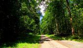 Trail Walk LONGPONT - en forêt de Retz_56_Longpont_tour du Général Mangin_AR - Photo 43