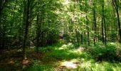Trail Walk LONGPONT - en forêt de Retz_56_Longpont_tour du Général Mangin_AR - Photo 119