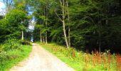 Trail Walk LONGPONT - en forêt de Retz_56_Longpont_tour du Général Mangin_AR - Photo 106