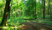 Trail Walk LONGPONT - en forêt de Retz_56_Longpont_tour du Général Mangin_AR - Photo 129