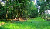 Trail Walk LONGPONT - en forêt de Retz_56_Longpont_tour du Général Mangin_AR - Photo 173