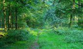 Trail Walk LONGPONT - en forêt de Retz_56_Longpont_tour du Général Mangin_AR - Photo 176
