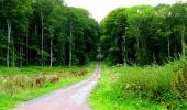 Trail Walk LONGPONT - en forêt de Retz_56_Longpont_tour du Général Mangin_AR - Photo 67