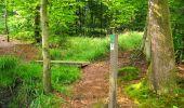 Trail Walk LONGPONT - en forêt de Retz_56_Longpont_tour du Général Mangin_AR - Photo 92