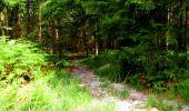 Trail Walk LONGPONT - en forêt de Retz_56_Longpont_tour du Général Mangin_AR - Photo 21