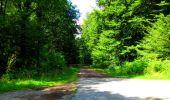Trail Walk LONGPONT - en forêt de Retz_56_Longpont_tour du Général Mangin_AR - Photo 56