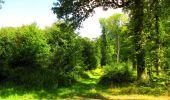 Trail Walk LONGPONT - en forêt de Retz_56_Longpont_tour du Général Mangin_AR - Photo 52