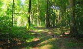Trail Walk LONGPONT - en forêt de Retz_56_Longpont_tour du Général Mangin_AR - Photo 144