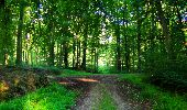 Trail Walk LONGPONT - en forêt de Retz_56_Longpont_tour du Général Mangin_AR - Photo 156
