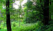 Trail Walk LONGPONT - en forêt de Retz_56_Longpont_tour du Général Mangin_AR - Photo 96