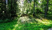 Trail Walk LONGPONT - en forêt de Retz_56_Longpont_tour du Général Mangin_AR - Photo 114
