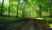 Trail Walk LONGPONT - en forêt de Retz_56_Longpont_tour du Général Mangin_AR - Photo 126